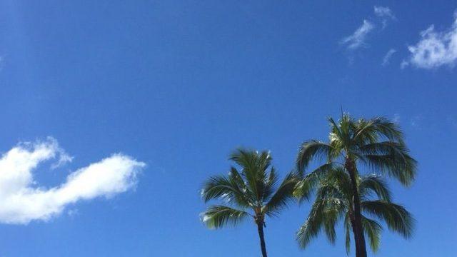 Hawaii関連